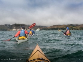 Lunch paddle on Tomales Bay