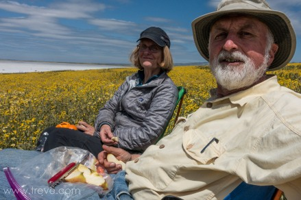 Lunch time at Soda Lake.