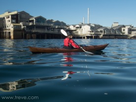 Paddling on Monterey Bay