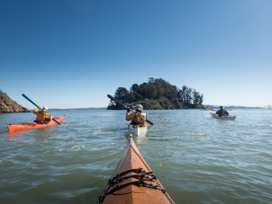 Paddling towards the Marin Islands. Thursday BASK Paddle. Lock Lomond Yacht Harbor to China Camp.