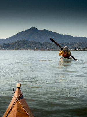 Mt Tamalpais rising out of the bay. Thursday BASK Paddle. Lock Lomond Yacht Harbor to China Camp.