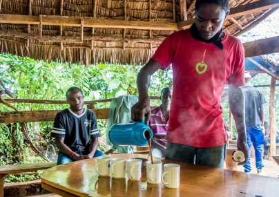 Fresh coffee. Chagga Culture and Coffee