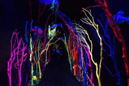 Meow Wolf Museum in Santa Fe