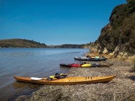 BASK Skills Clinic paddle on Drakes Estero.